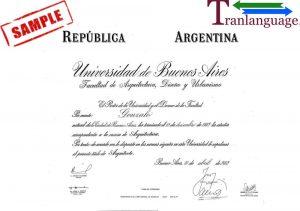 Tranlanguage Diploma Argentina