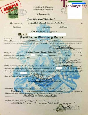 Tranlanguage Diploma Honduras