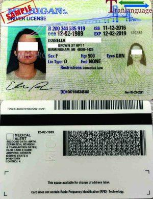 Tranlanguage Driver License USA