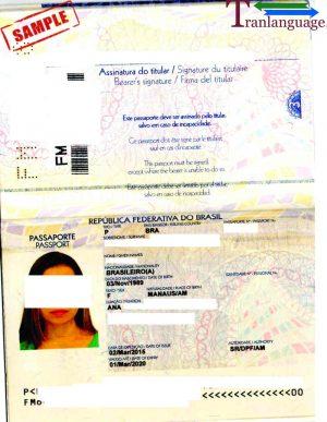 Tranlanguage Passport Brazil