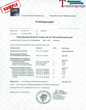 Tranlanguage Transcript Germany I