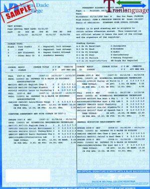 Tranlanguage Transcript MDC I